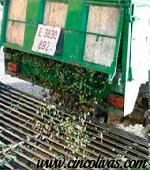 Transporte_y_Recepción_del_aceite_de_oliva2