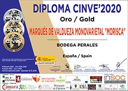 premio cinve 2020 oro