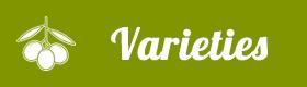 Varieties Olive Oil